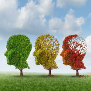 What Can You Expect During the Moderate Stage of Alzheimer's Disease? 2019